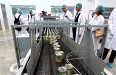 Hành trình 40 năm của những lon sữa đặc nhãn hiệu Ông Thọ