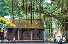 [Photo] Mục sở thị kiến trúc độc đáo của đền thờ Mẫu Liễu Hạnh