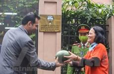 Đại sứ quán Kuwait phát miễn phí dưa hấu hỗ trợ nông dân Việt Nam