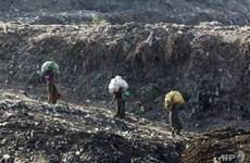 Ấn Độ: Báo động núi rác tại New Delhi sắp cao hơn đền Taj Mahal