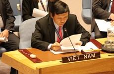 Bạn bè quốc tế tin tưởng, ủng hộ Việt Nam ứng cử vào HĐBA LHQ
