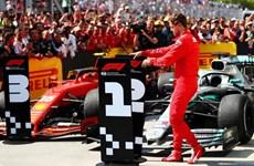 """Sebastian Vettel nổi điên sau khi bị """"đánh cắp"""" mất chiến thắng"""