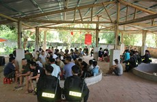 Hòa Bình: Bắt giữ 66 đối tượng tổ chức đá gà ăn tiền quy mô lớn