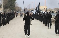 Giới chuyên gia đánh giá IS vẫn luôn là mối đe dọa tại Syria