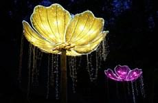 Chiêm ngưỡng lễ hội đèn lồng rực rỡ của làng nghề cổ truyền Trung Quốc