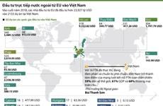 [Infographics] Đầu tư trực tiếp nước ngoài từ EU vào Việt Nam