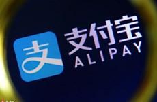 Alipay đầu tư hàng trăm triệu USD phát triển bóng đá nữ Trung Quốc
