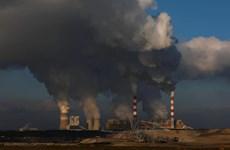 Ba Lan đồng ý bồi thường chi phí phát thải carbon cho doanh nghiệp