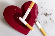 Phụ nữ hút thuốc lá có nguy cơ mắc bệnh tim mạch cao hơn nam giới