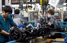 Các công ty lớn tại châu Á đang cắt giảm chi tiêu cho sản xuất