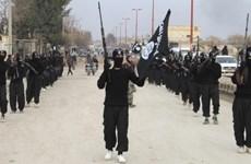 Mỹ kêu gọi châu Âu hồi hương, truy tố những đối tượng từng gia nhập IS