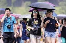Nắng nóng nghiêm trọng tại Nhật Bản khiến gần 60 người tử vong