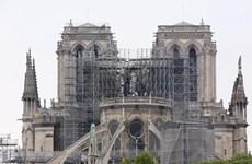 Trẻ em Paris có nguy cơ nhiễm độc chì do vụ cháy Nhà thờ Đức Bà