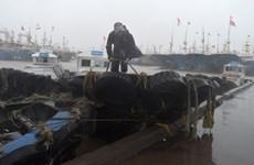 Siêu bão Lekima đổ bộ vào Trung Quốc, ít nhất 13 người thiệt mạng