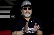 Huyền thoại Maradona trở lại Argentina trên cương vị huấn luyện viên