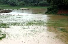 Các địa phương ứng phó với sạt lở, ngập lụt vùng trũng và khu đô thị