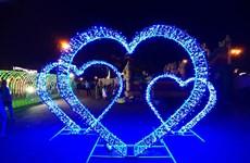 Cần Thơ: Rực rỡ lễ hội đèn LED nghệ thuật chào Trung thu