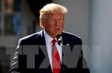 Ủy ban Hạ viện Mỹ thông qua nghị quyết về luận tội Tổng thống Trump