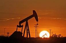 Mỹ vượt Saudi Arabia, trở thành nước xuất khẩu dầu lớn nhất thế giới