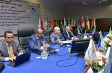 Các nước châu Phi hướng tới những hoạt động chung về chống khủng bố
