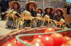 Thích thú với lễ hội 'đại chiến cà chua' ở đất nước Indonesia