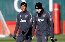Manchester United ráo riết chuẩn bị cho trận gặp Partizan