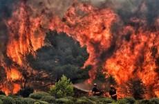 LHQ: Cần 300 tỷ USD để làm chậm quá trình nóng lên của Trái Đất