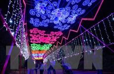 """Chiêm ngưỡng lễ hội đèn lồng nghệ thuật """"Khu rừng Ánh trăng"""" tại Mỹ"""