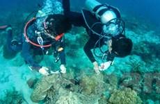 Thái Lan hướng tới mục tiêu phát triển ngành du lịch có trách nhiệm