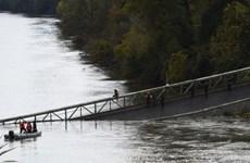 Pháp nỗ lực tìm kiếm các nạn nhân trong vụ sập cầu trên sông Tarn