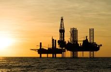 Giá dầu tăng trước thông tin tích cực về đàm phán thương mại Mỹ-Trung
