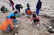 Huy động hàng trăm thanh niên thu gom dầu tràn trên biển Hà Tĩnh