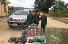 Kon Tum: Phát hiện vụ vận chuyển pháo và thịt thú rừng trái phép