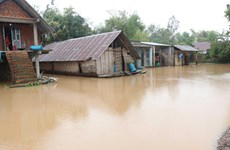 Gần 300 người chết và thiệt hại 2 tỷ USD mỗi năm do biến đổi khí hậu