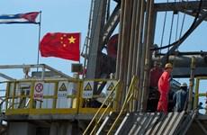 Giá dầu đi xuống trước số liệu xuất khẩu ảm đạm của Trung Quốc