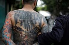 Mỹ bắt giữ 230 đối tượng tình nghi thuộc băng nhóm tội phạm khét tiếng