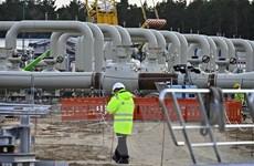 Châu Âu phản đối lệnh trừng phạt của Mỹ nhằm vào dự án ống dẫn khí đốt