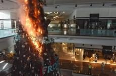 Hong Kong: Người biểu tình tấn công cảnh sát đêm Giáng sinh