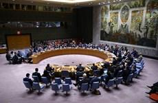 Việt Nam chính thức là ủy viên không thường trực Hội đồng Bảo an