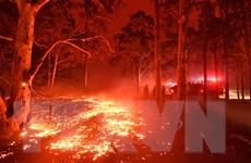 Khói bụi do cháy rừng tại Australia lan sang New Zealand
