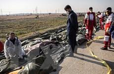 Hình ảnh kinh hoàng từ vụ rơi máy bay Ukraine tại Iran