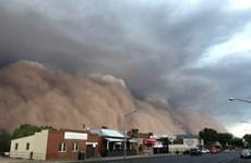 Australia: Bão khiến hơn 30.000 hộ gia đình mất điện