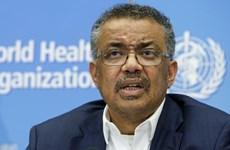 WHO thừa nhận sai sót về công bố cấp độ cảnh báo dịch do virus corona