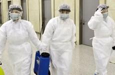 Bán đảo Triều Tiên nỗ lực ngăn chặn sự lây lan của virus nCoV