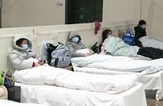 Nhật Bản thông báo có công dân tử vong ở Vũ Hán do nhiễm nCoV