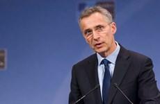NATO, EU quan ngại trước tình hình xung đột leo thang tại Syria