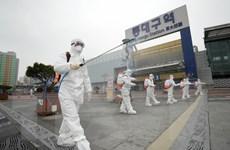 ĐSQ Việt Nam đề nghị Hàn Quốc giúp đỡ công dân bị nhiễm COVID-19