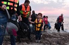 EU, Hy Lạp tạm thời cho phép 5.000 người di cư hồi hương tự nguyện