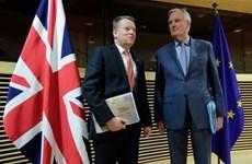 Hoãn đàm phán thương mại Brexit vòng hai do COVID-19