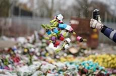 Ngành công nghiệp trồng hoa ở Hà Lan thiệt hại nặng nề do COVID-19